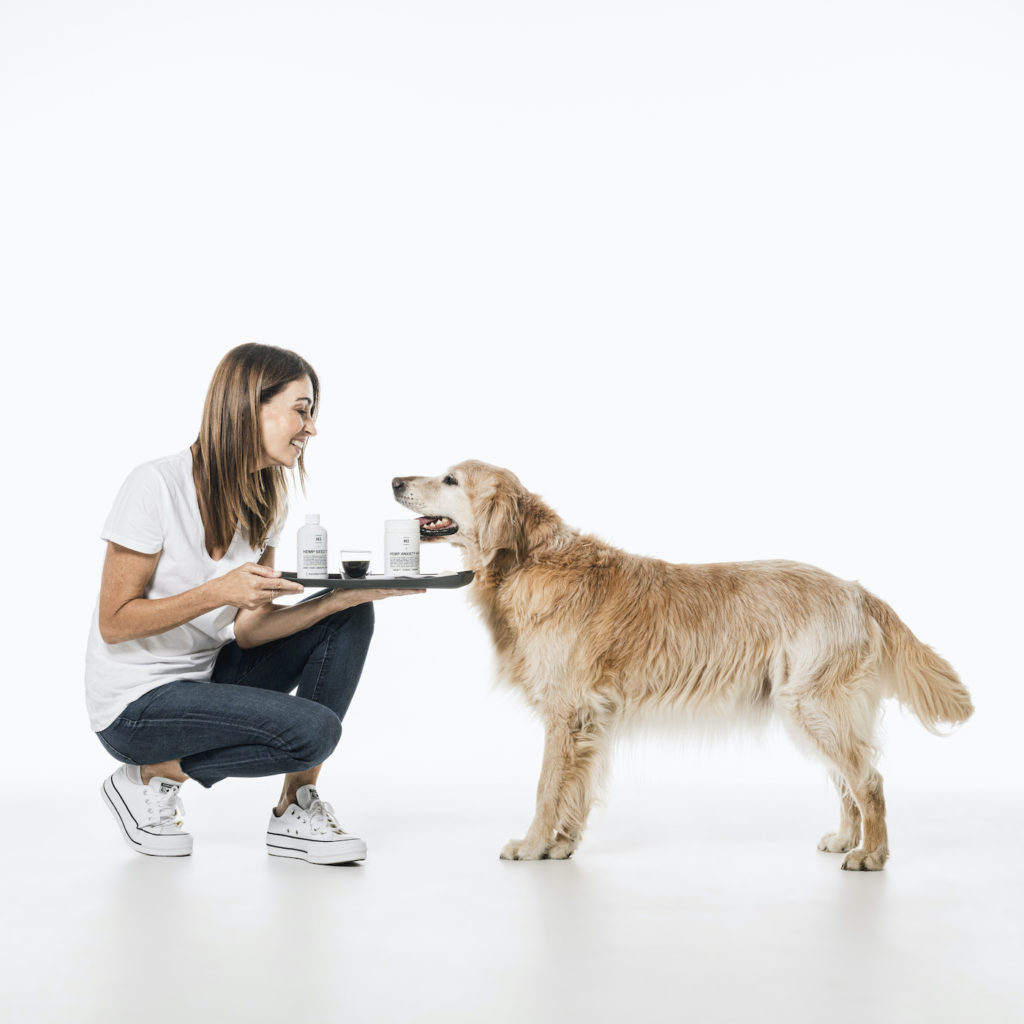 Dr. Katrina's Tips To Help Reduce Anxiety in Rescue Dogs, hemp oil for dogs australia